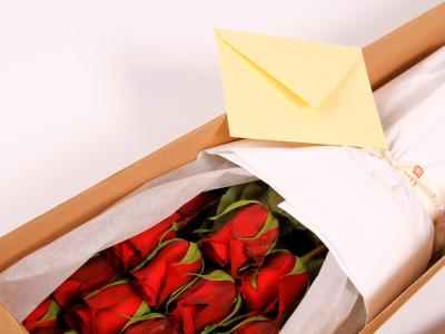 VEĽKÝ BOX RUŽÍ